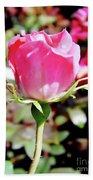 Pink - Rose Bud - Beauty Beach Towel
