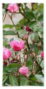 Pink Rose Buds Beach Towel