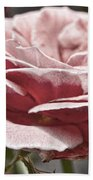 Pink Rose Faded Beach Towel