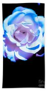 Pink Rose Has The Blues Beach Towel