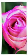 Pink Rose With Leaves Beach Towel