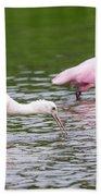 Pink Roseate Spoonbills Feeding Beach Towel