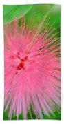 Pink Spikes Beach Towel