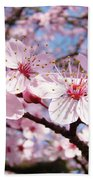 Pink Spring Blossoms Art Print Blue Sky Landscape Baslee Troutman Beach Towel