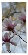 Pink Tulip Magnolias Beach Towel