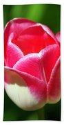 Pink Tulip Beach Towel