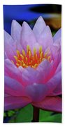 Pink Water Lily 007 Beach Towel