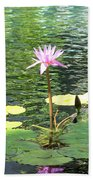 Pink Water Lily Pad Beach Towel