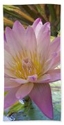 Pink Water Lily Beach Towel