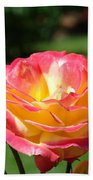 Pink Yellow Roses 3 Summer Rose Garden Giclee Art Prints Baslee Troutman Beach Towel