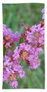 Pinkish Red Flower Bloom Close Up Beach Towel