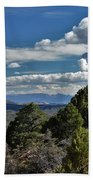 Pinon Forest At The Top Of Kolob Canyon Beach Towel