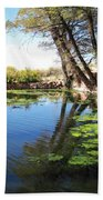 Pipe Springs Pond Beach Towel
