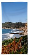 Pismo Beach California Beach Towel