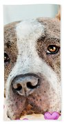 Pit Bull Dog - Pure Love Beach Towel by Sharon Cummings