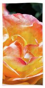 Planet Of The Rose Beach Towel