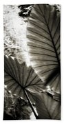 Plant 8661 Beach Towel