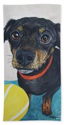 Playful Dachshund Beach Towel by Megan Cohen