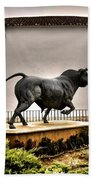 Plaza De Toros - Ronda Beach Towel