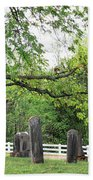 Pleasant Forest Cemetery Beach Towel