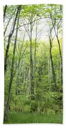 Pleasure Of Pathless Woods - Nat Beach Sheet