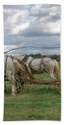 Plowing In Lancaster County Beach Towel