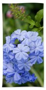 Plumbago Beach Towel