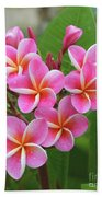 Plumeria After The Rain II Beach Towel