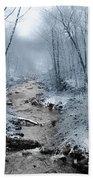 Pocono Mountain Winter Beach Towel