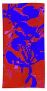 Poinciana Flower 4 Beach Towel