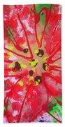 Poinsettia For Christmas Beach Sheet