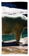 Polar Bear 3 Beach Towel