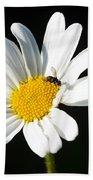 Pollen Collection Beach Towel