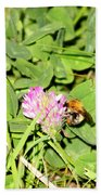 Pollen Collection Beach Towel