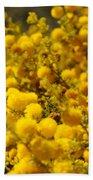 Pollen Beach Sheet