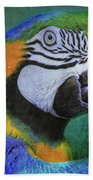 Polly Who Beach Towel