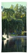 Pond At Mae Stecker Park In Shelby Township Mi  Beach Towel
