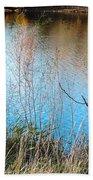 Pond Life Beach Towel