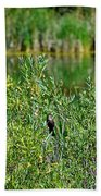 Pond On Cherry Creek Study 2 Beach Towel