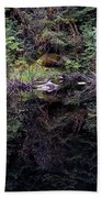 Pond Reflections -- Tongass National Forest Alaska Beach Towel