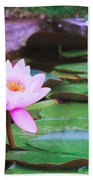 Pond With Water Lilly Flowers Beach Towel