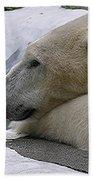 Pondering Pola Beach Towel