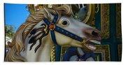 Pony Carrsouel Portrait Beach Sheet