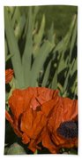 Poppies 1 Beach Towel