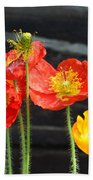 Poppies 17-01 Beach Towel