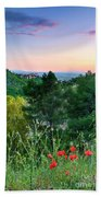 Poppies And The Alhambra Palace Beach Towel