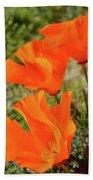 Poppies Antelope Valley Beach Towel
