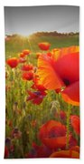 Poppies At Sunset Beach Towel