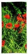 Poppies Flowerbed Beach Towel