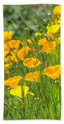 Poppies Hillside Meadow Landscape 19 Poppy Flowers Art Prints Baslee Troutman Beach Towel